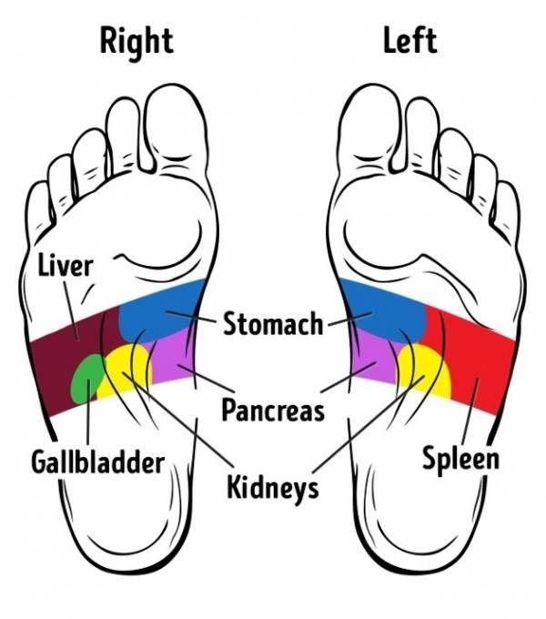 Kita semua tahu bahwa semua organ tubuh memiliki titik yang menyambung ke kaki, titik-titik itu yang disebut daerah refl...