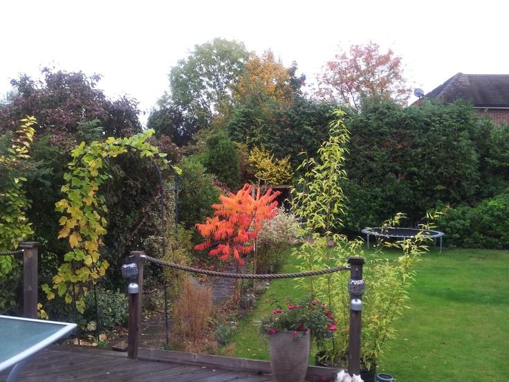 Autumn in Sunbury on Thames UK
