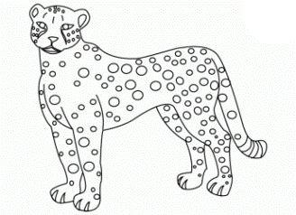 gepard ausmalbilder - ausmalbilder für kinder