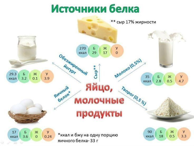 Белковые блюда (рецепты) — SportWiki энциклопедия