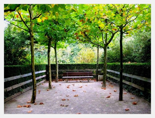 Marvelous Flora Botanischer Garten K ln Fort X K ln