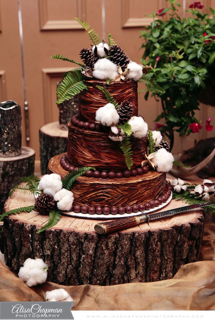 Love This Grooms Cake With Cotton Bolls Alisa Chapman