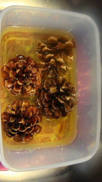 Tired of the rustic look of pinecones in your decor? Especially if you lean toward a light and airy look. Why not bleach your pinecones for an unusual beautiful…