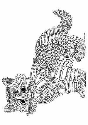 kitten coloring pages for adults - 106 b sta bilderna om coloring pages cats p pinterest