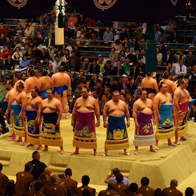 A day watching half naked men being thrown out of a ring is one of those experiences you just can't miss if you're visiting Japan.   Check out my latest Japan blog link in bio ⤴  #Japan #sumowrestling #osaka #sumo #travel