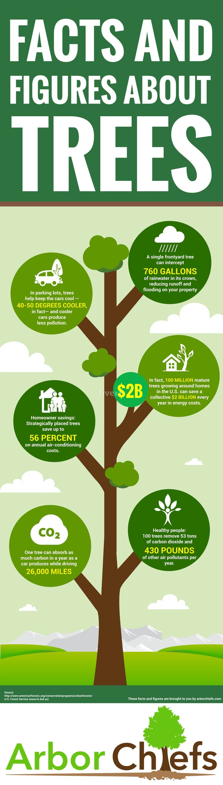 Amazing Facts and Figures About Trees #Infographic