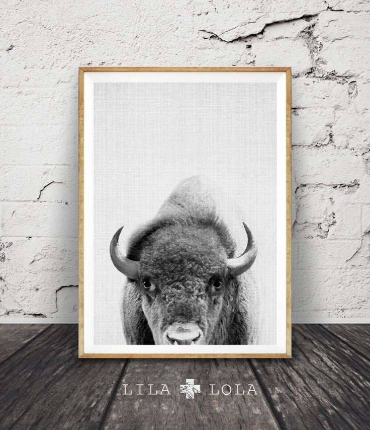 Buffalo Print, Bison Wall Art, Black and White Buffalo, Modern Minimal, Grey Decor, Animal Photography, Printable Art, Instant Download by lilandlola on Etsy https://www.etsy.com/listing/267558590/buffalo-print-bison-wall-art-black-and