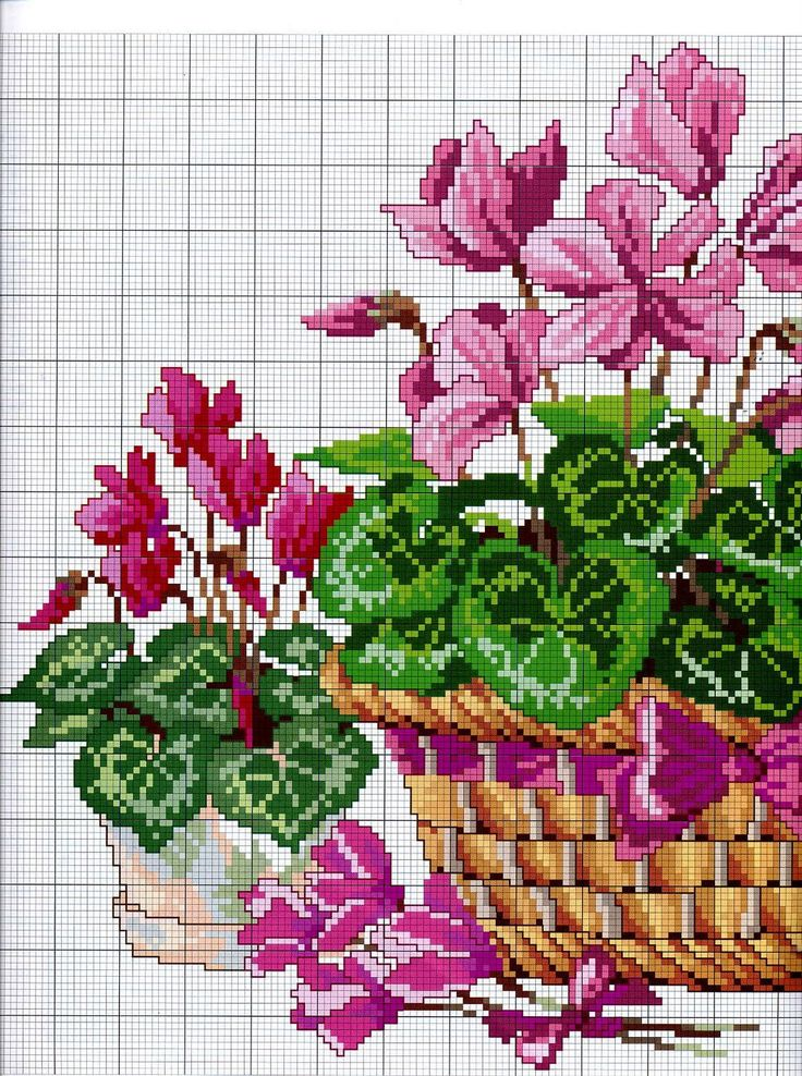 flores.jpg (1191×1600)