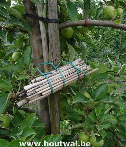 25 beste idee n over tips voor organisch tuinieren op pinterest tuinieren onkruid azijn en - Terras schuilplaats ...