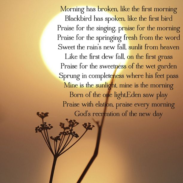 <3 Morning Has Broken ~ Cat Stevens---sang every word and note over and over and over circa 1975.....still moves me.