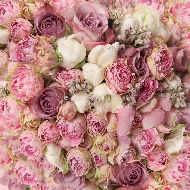 Glasbilder - Romantic Roses 1 | Bei MonkeyPosters.de