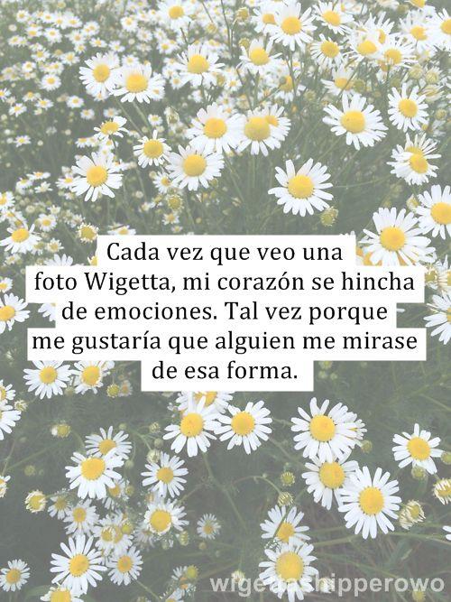 La realidad de wigetta…..  | via Tumblr