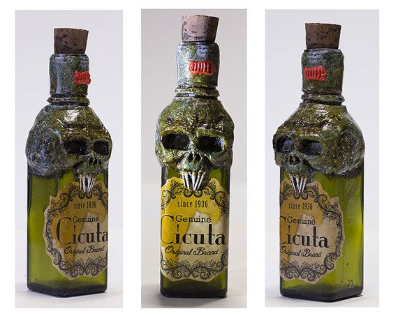 Halloween Decorations Potion Bottles New 176 Best Halloween Apothecary Bottles Images On Pinterest 2018