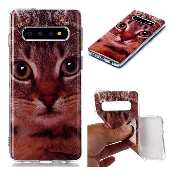 Garfield Cat Soft Tpu Cell Phone Back Cover For Samsung Galaxy S10 6 1 Inch Galaxy S10 Cases Guuds In 2021