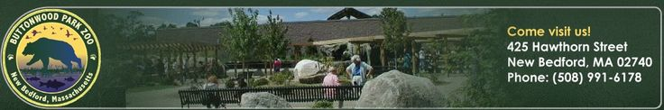 Buttonwood Park Zoo in New Bedford, MA.  Where the elephants play!