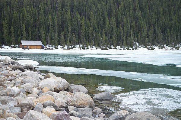 Cabin in Lake Louise: by Odi Kletski Starting at $37:00