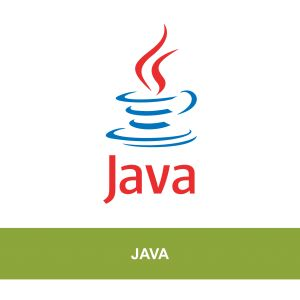 specialize in web application and multi-tiered distributed enterprise application development by using Java Platform, Enterprise Edition technologies.