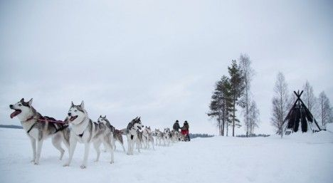 Luleå: 8 winter must-dos in Sweden's far north - The Local