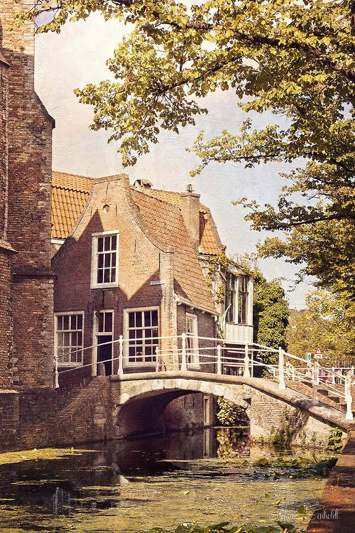 Delft, Netherlands (by {Miss Honey})