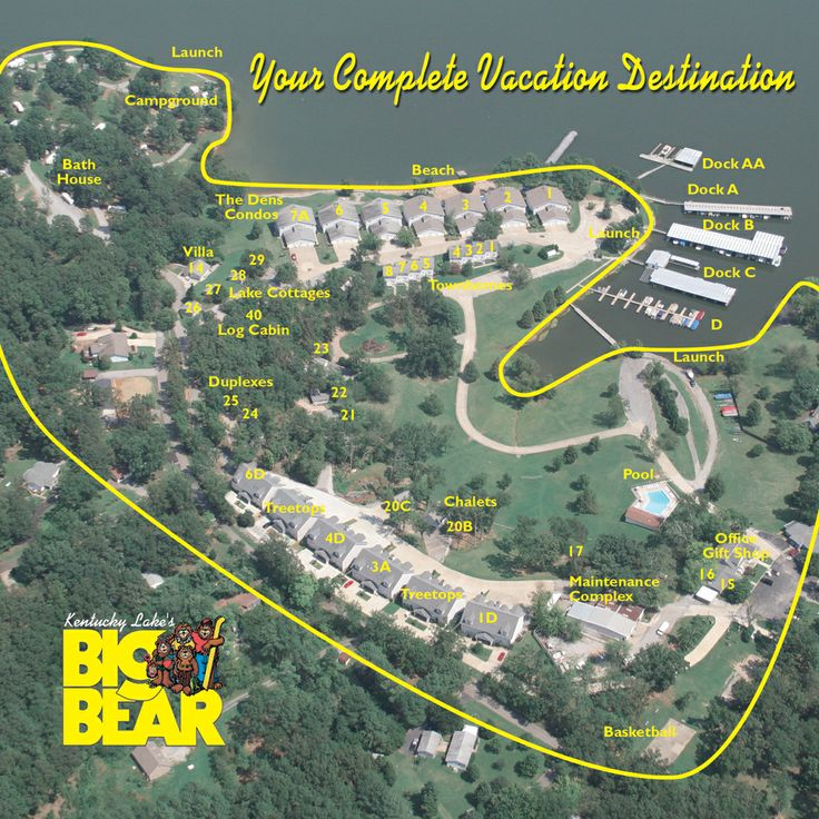 California Map Bear%0A consulting resume examples