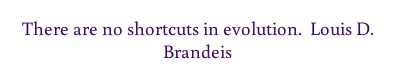 There are no shortcuts in evolution. Louis D. Brandeis...