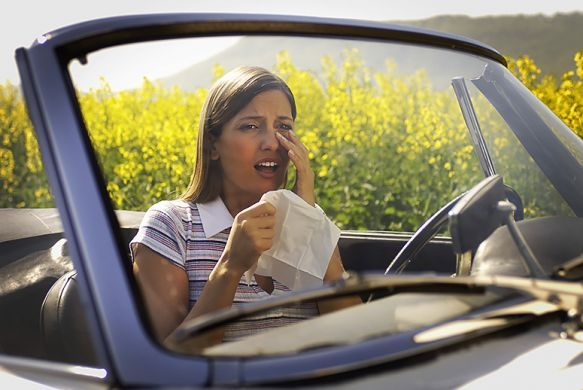 Your Allergies Getting Worse? Blame Your Car | TakePart! Drive less, combine and plan trips, carpool, ride share... it will save you money and help in decreasing the negative impact every individual places on the environment. We CAN'T live without nature! Help to save it!