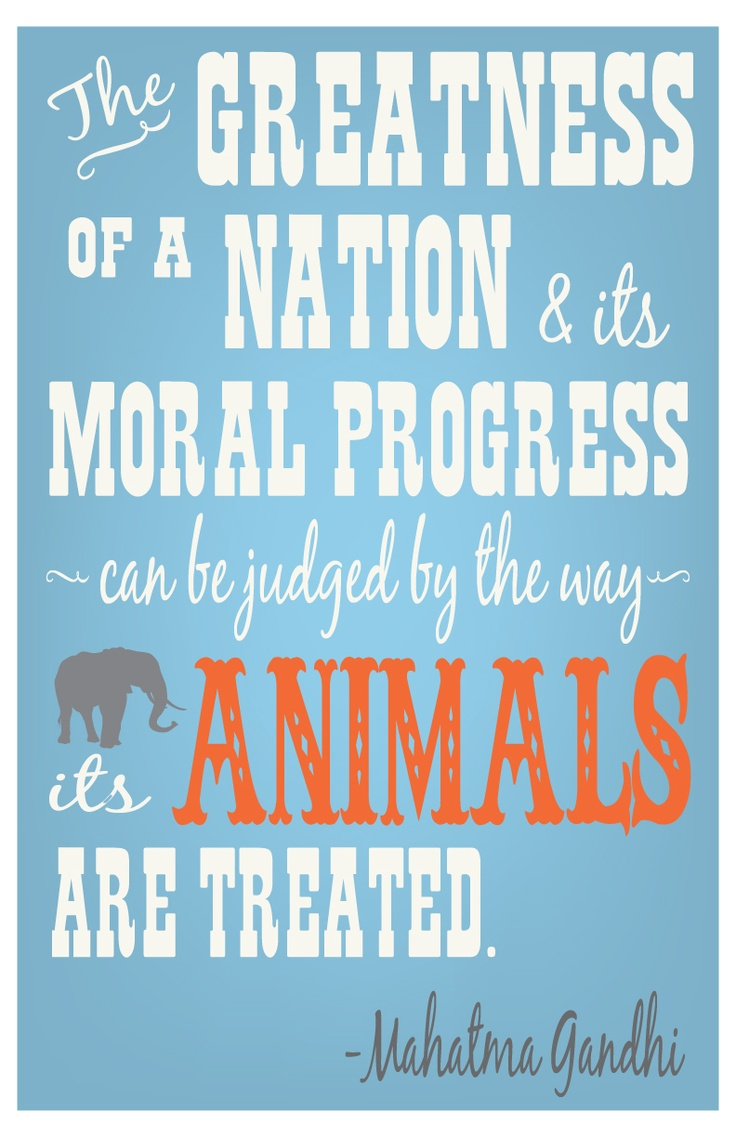 The greatness of a nation and it's moral progress can be judged by the way its animals are treated.