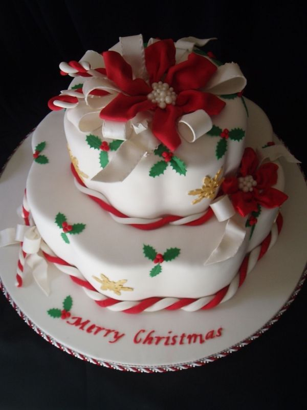 Winter - love the shape of this cake and background of white with added color