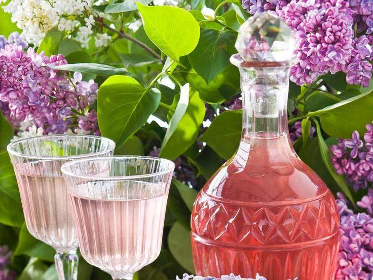 Hemgjord syrensaft med en söt sommarsmak och vacker färg. Här får du receptet som gör det enkelt att lyckas!