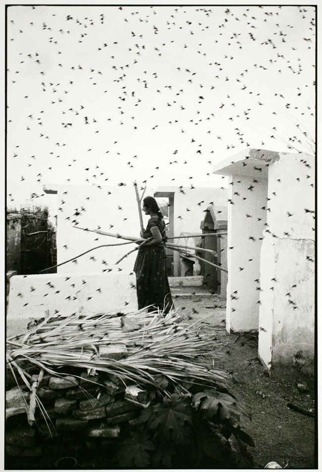 © GRACIELA ITURBIDE - Cementerio / Cemetery, Juchitan, Oaxaca, 1988 -