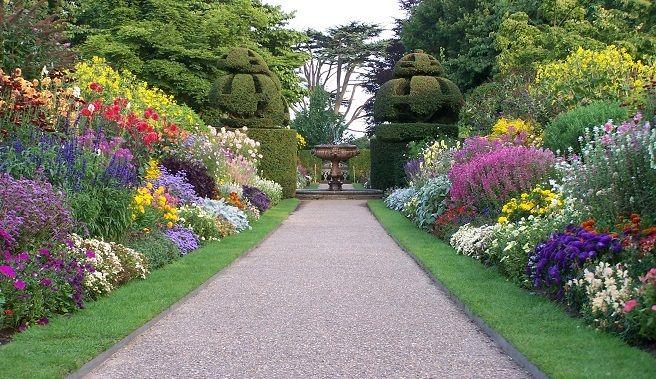 Árboles y arbustos para dividir el jardín