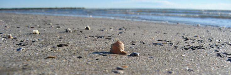 La spiaggia di Caorle  #Caorle