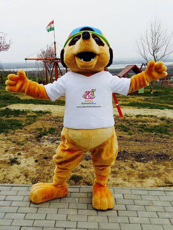 Meerkat Zobori - Hungary #mascot #costume #character #hungary #meerkat