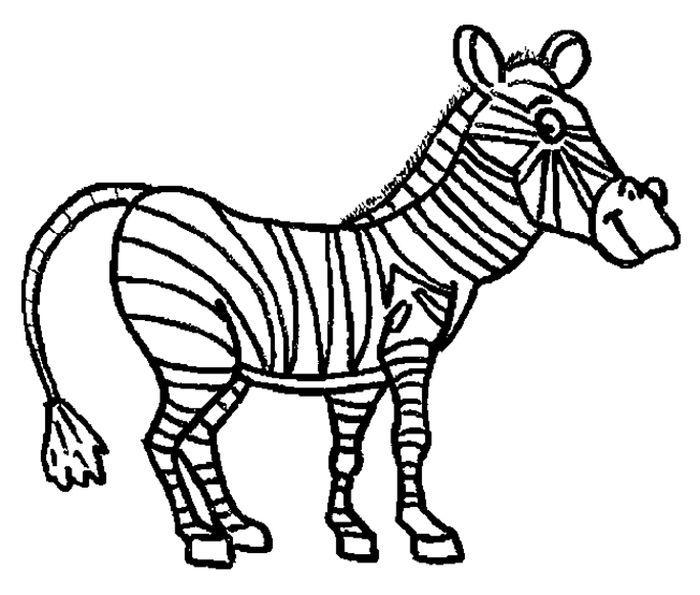 Coloring Pages Horse Zebra Zebra Coloring Pages Animal Coloring Pages Horse Coloring Pages