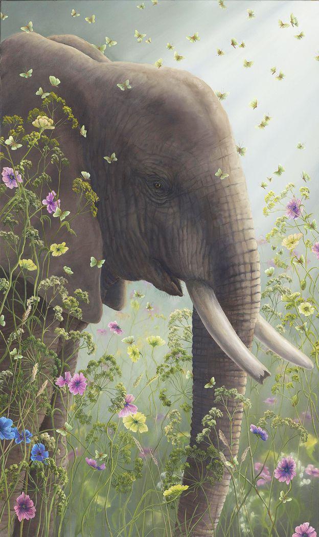 17 best ideas about elephant wallpaper on pinterest - Elephant background iphone ...