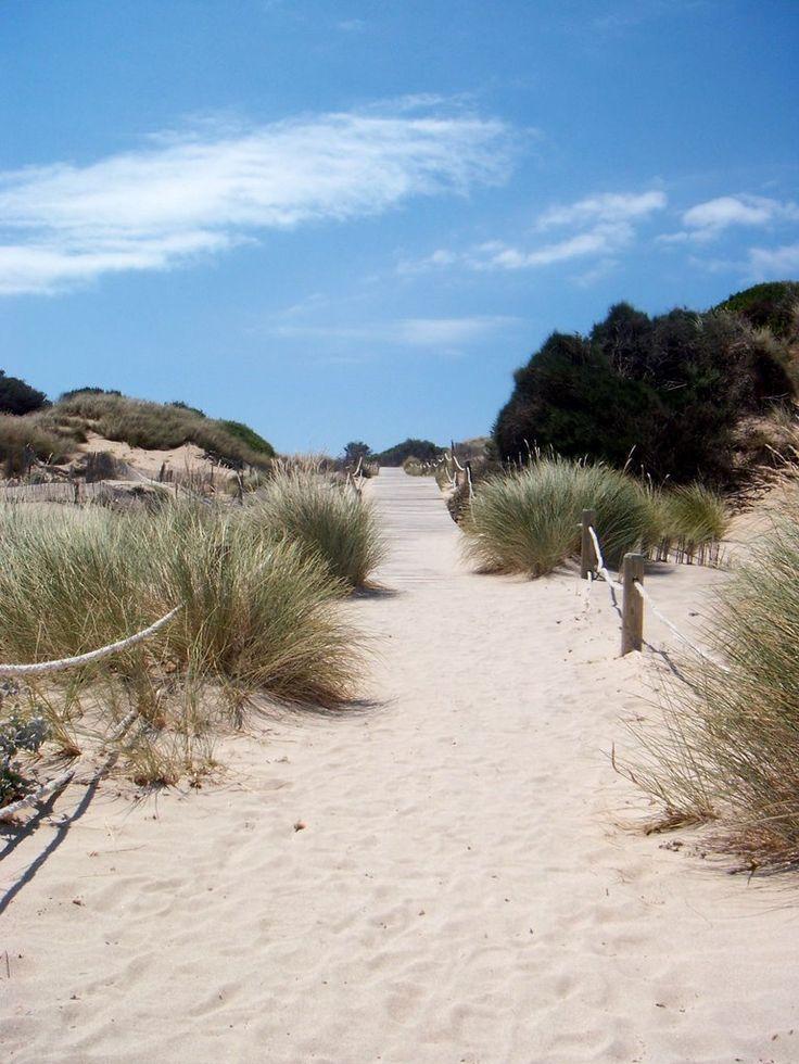 Arenal de Son Saura- Sentiero tra le dune,  Menorca  Spain