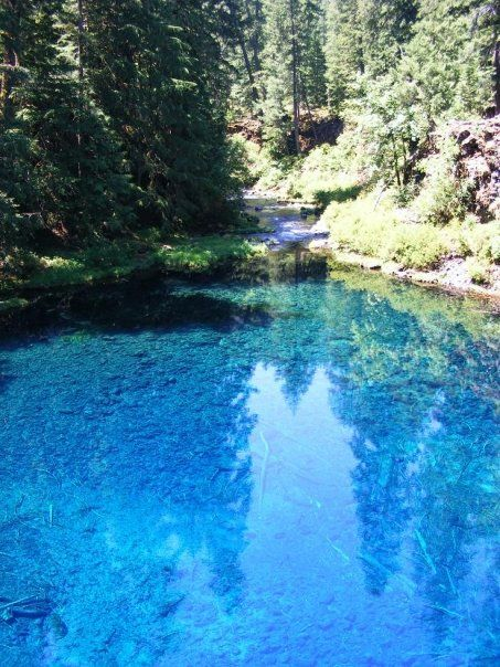 If You Didn't Know About These 8 Swimming Holes In Oregon, They're A Must Visit.....4. Tamolich Pool