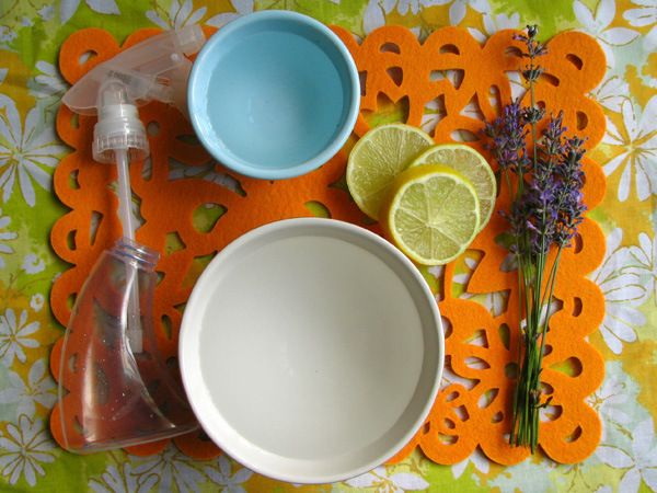 MAKE | Homemade Flea Repellent