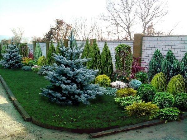Посадка хвойных деревьев на участке - ландшафтный дизайн и проектирование своими…