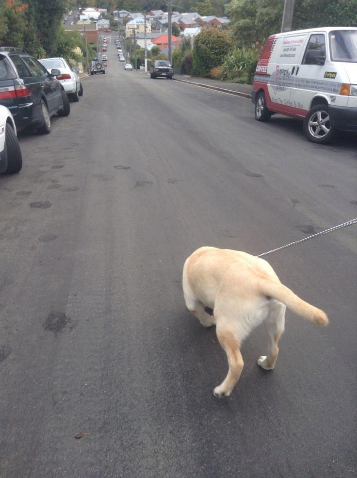 Going down a street