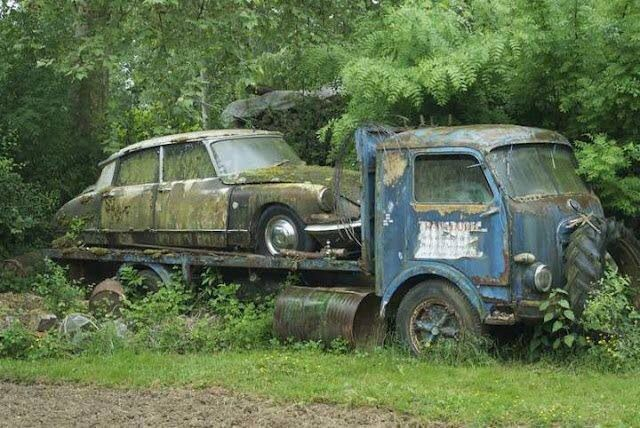 Abandoned car & truck #waste                                                                                                                                                                                 More