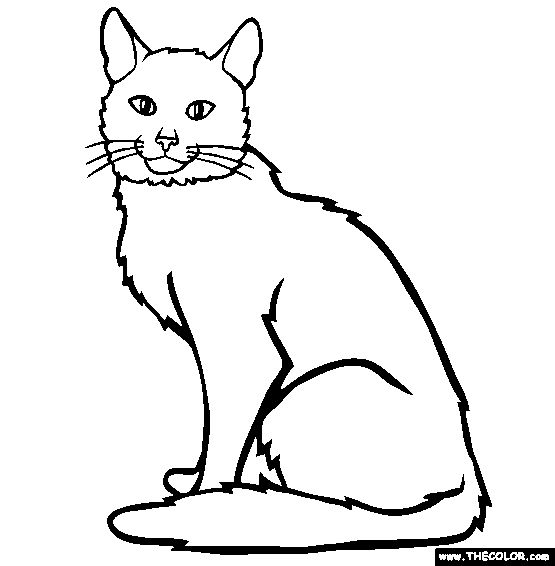 domestic cat coloring pages - photo#28