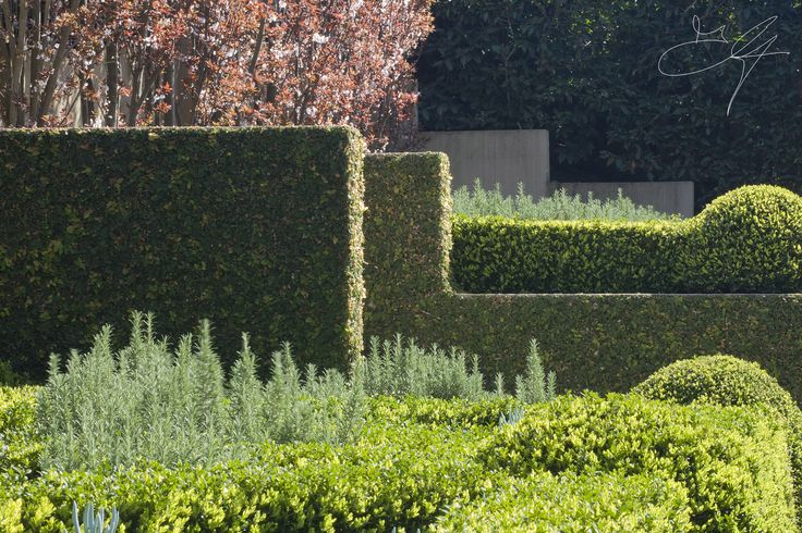 Formal elements with softer plant infills in one of our Classical gardens - Eugene Gilligan Garden Design