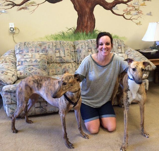 Jest with hi new family Carol and Emmie.  Congratulations to this new #fureverfamily! #adoptaretiredracer #gpi #greyhound #greyhoundpetsinc #greyhoundsmakegreatpets