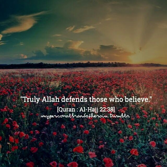 Indeed, Allah defends those who have believed. Indeed, Allah does not like everyone treacherous and ungrateful. - HOLY QURAN 22:38