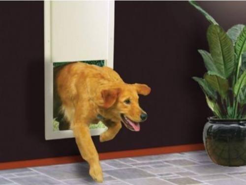 portinhas-pet-cachorro-lista-04