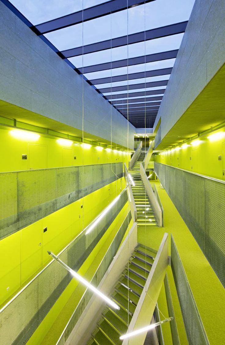 Grüner Teppich 💚: Wir verliehen allen drei Science Parks der Uni Linz mit unseren Böden ihr geplantes Aussehen.