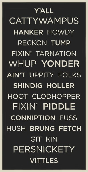 Southern language. Love it!- especially cattywampus ;)