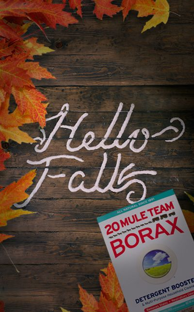 The leaves are falling! Click for a cool guide on how you can use 20 Mule Team Borax to preserve Autumn leaves. Preserved leaves and flowers can be used for cool DIY projects like flower jars, shadow boxes and other decor items.