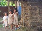 Los niños indigenas Wiwas